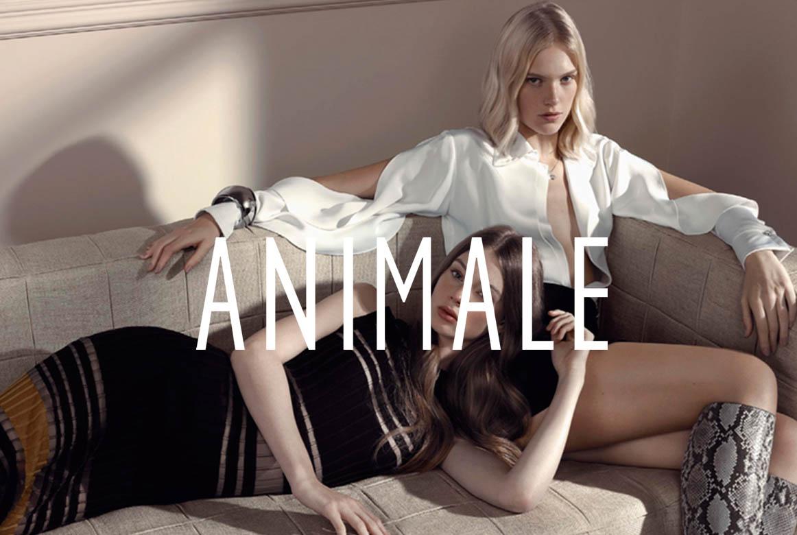 ANIMALE_1